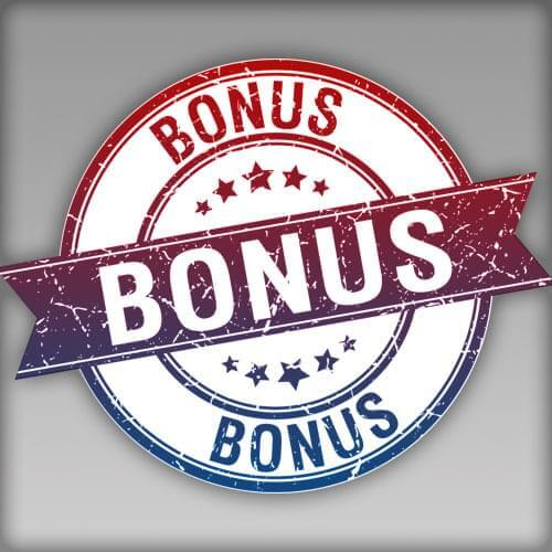 Public Domain Ultimate Bundle Bonuses